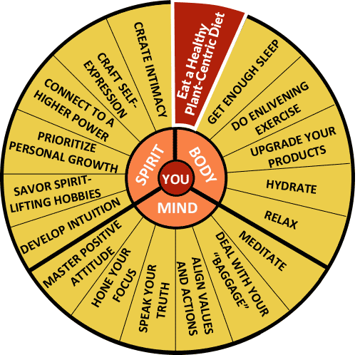 The Well-Being Wheel Graphic - Spoke 1: Eat A Healthy Plant-Centric Diet: Rainbow Food on Planes