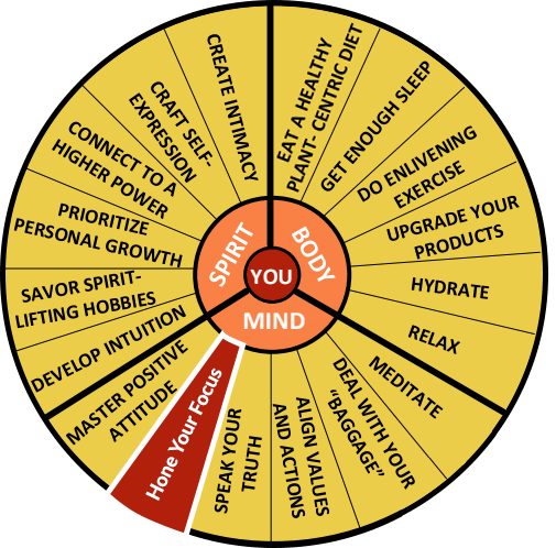 The Well-Being Wheel Graphic Spoke 11: Hone Your Focus