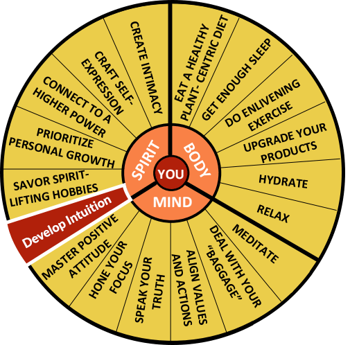 The Well-Being Wheel Graphic Spoke 13: Develop Intuition