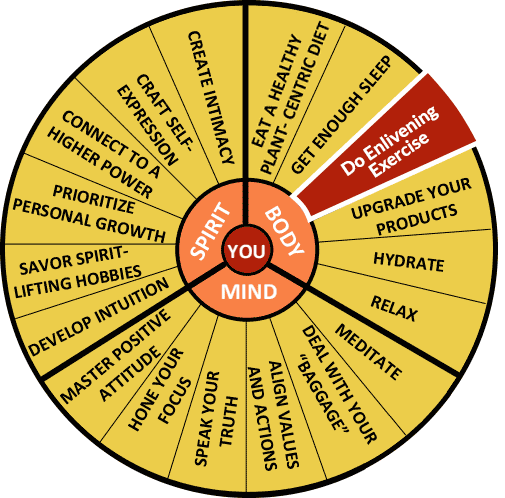 The Well-Being Wheel Graphic - Spoke 3: Do Enlivening Exercise: From Net Sports to Nunchucks