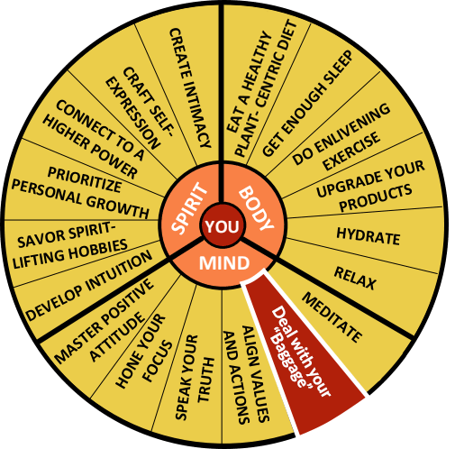 The Well-Being Wheel Graphic Spoke 8: Deal with your Baggage.