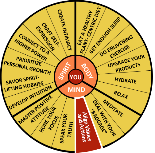 The Well-Being Wheel Graphic Spoke 9: Align Values and Actions.